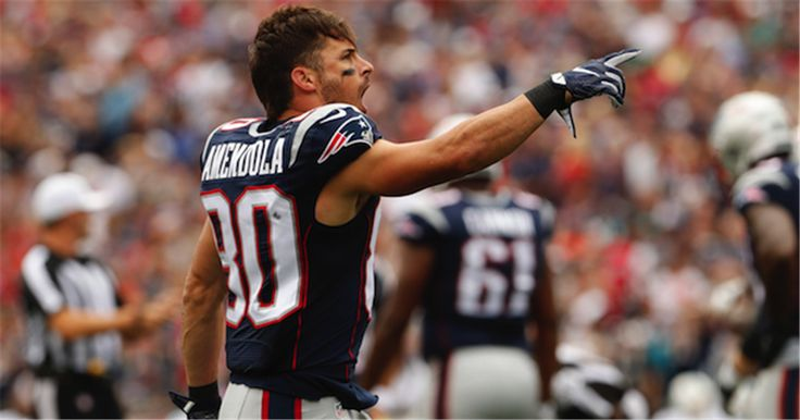 Danny Amendola reportedly will take a pay cut to remain with the New England Patriots in 2017.