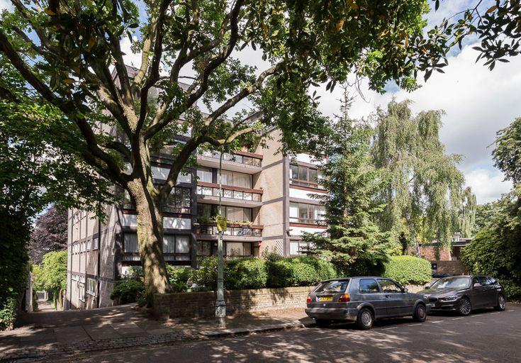 Copper Beech London N6 | The Modern House