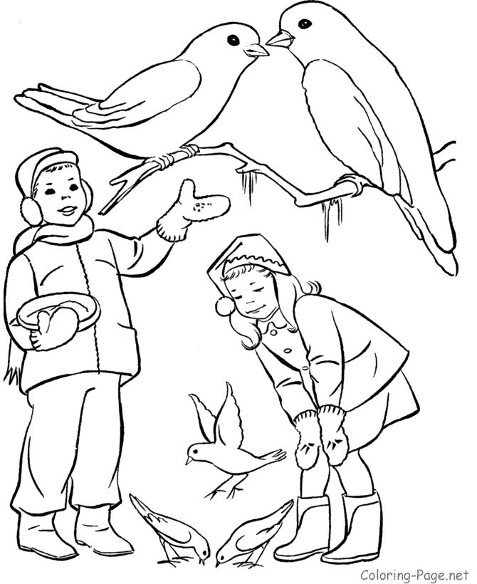 Winter coloring page - Feeding the birds