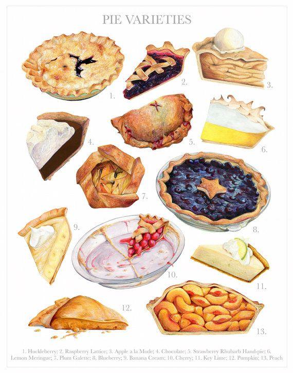 Pie Varieties Chart // Food Illustration // by KendyllHillegas