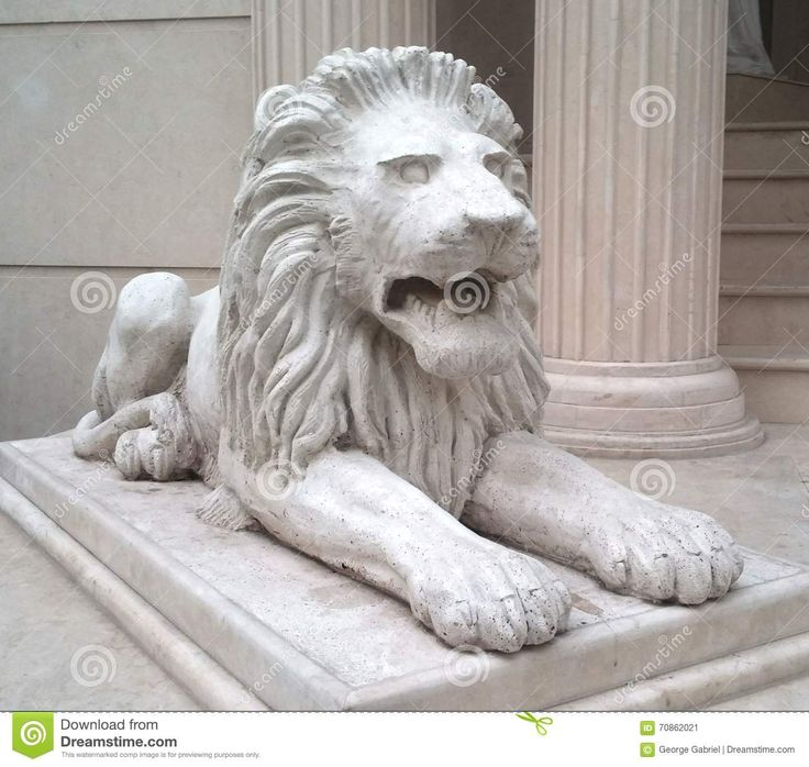 Download Lion Statue Royalty Free Stock Photography via CartoonDealer. Lion Statue Bucharest Romania. Zoom into our collection of high-resolution cartoons, stock photos and vector illustrations. Image:70862021