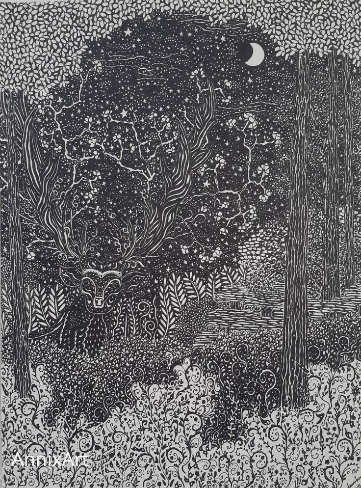 Detailed black and white drawing of a deer with antlers. Starry night time forest illustrations. Art by AnnixArt.