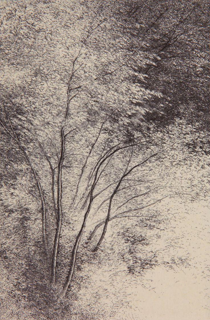 Shigeki Tomura : Nature, Autumn I at Davidson Galleries