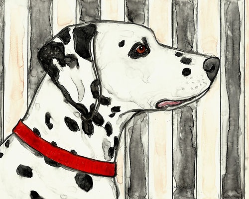 ... to the Dalmatian Club of America Foundation - the model is Lizzie