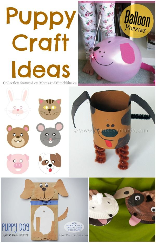 Puppy Crafts - A Collection Of Fun Ideas - Moms & Munchkins: Puppy Party Ideas, Dog Arts And Crafts, Balloon Puppy, Crafts Fun, Grand Kids, Fun Ideas, Crafts Dog Kids, Puppy Crafts, Dog Craft Kids