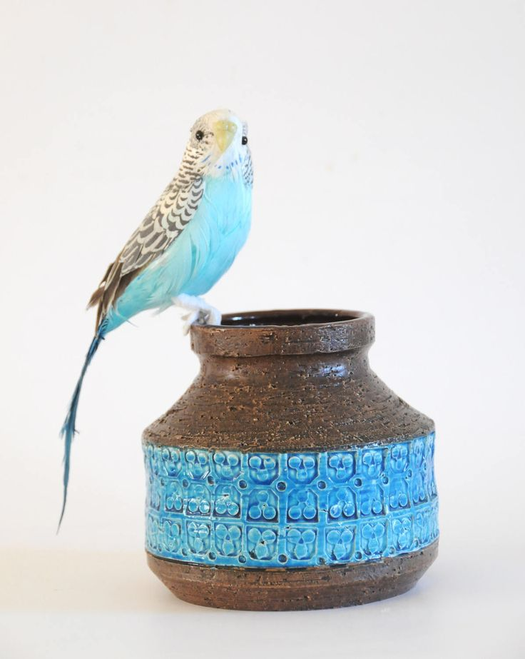 Bitossi Rimini by Aldo Londi - Vase. Chamotte stoneware with blue glaze. Vintage Rimini blue. Modern home accessory by FridasVintage on Etsy