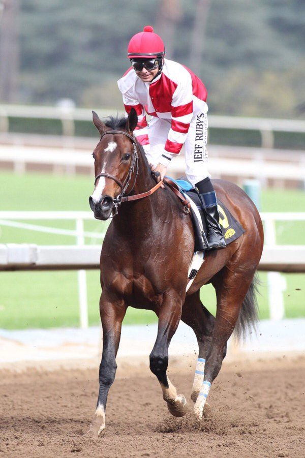 Songbird remains unbeaten in the Grade III $100,000 Santa Ysabel Stakes!