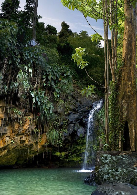 Annadale Falls   Grenada (by plimrn on TrekEarth)-- so beautiful! Hard to believe i will live there in a few months!