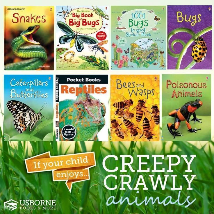 Want to know what different types of bees there are or learn about snakes and bugs? Check these books out and visit my Usborne website to see more just like them! http://e5496.myubam.com