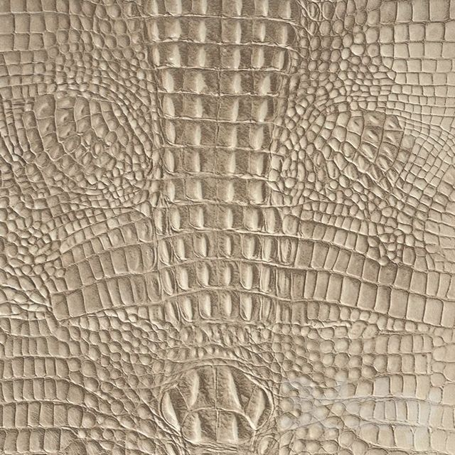 ALPHENBERG Kaiman skin