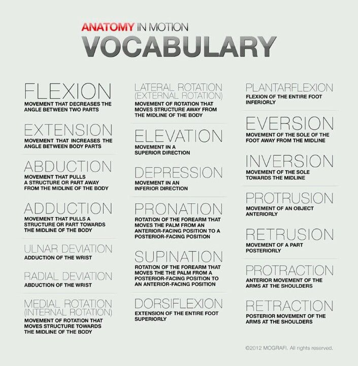 Note from TeamMona: Thanks to Anatomy in Motion, here's a handy little chart that explains what your Pilates instructor or body therapist is saying when they forget to use common language. ;-)
