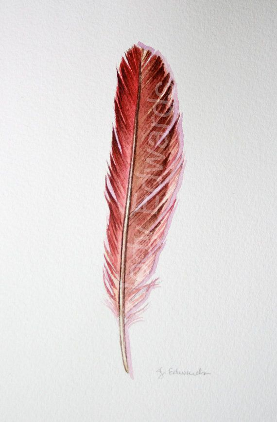 Red Cardinal feather tattoo idea!!!!  This is what i have been looking for!!!