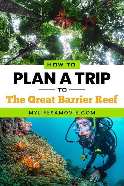 How to Plan a Trip to The Great Barrier Reef