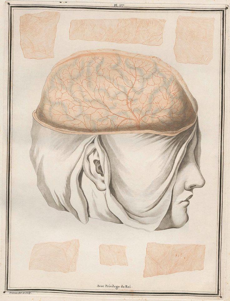 957 best Neurology & Psychiatry Oldies images on Pinterest ...