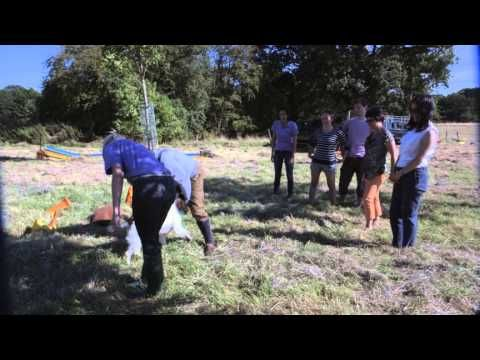 ▶ Four Seasons Hotel Hampshire - The Best Team Building Activities and Conference Venue outside London - YouTube