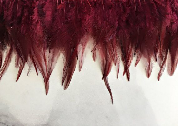 Rooster Boho Feathers Natural Feather Supplies Feathers for
