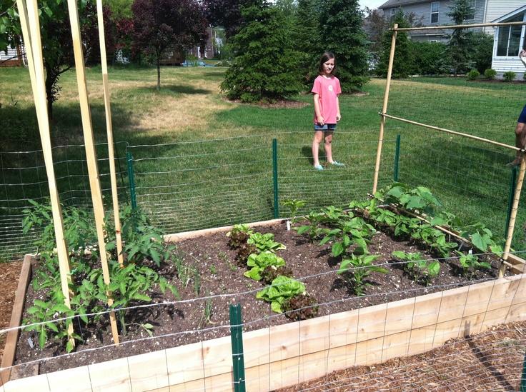4x8 Cedar Raised Bed Plants, Installation