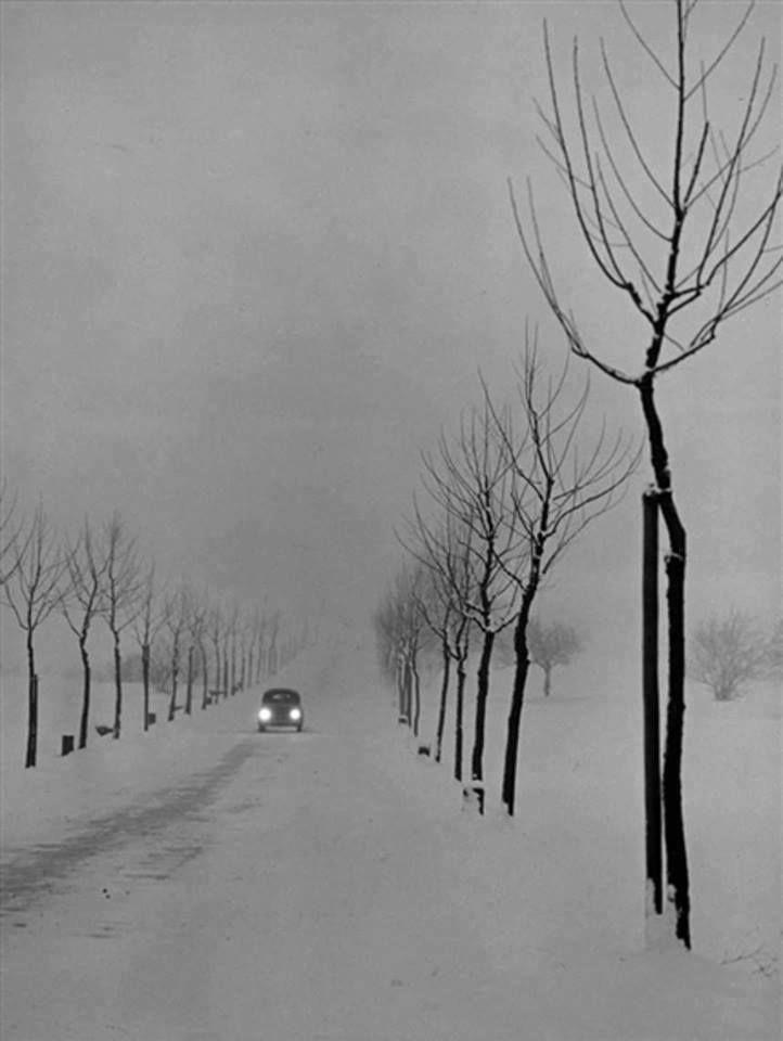 1956 R Autor Peter Keetman Fotografia Fotografia Artystyczna Czarny