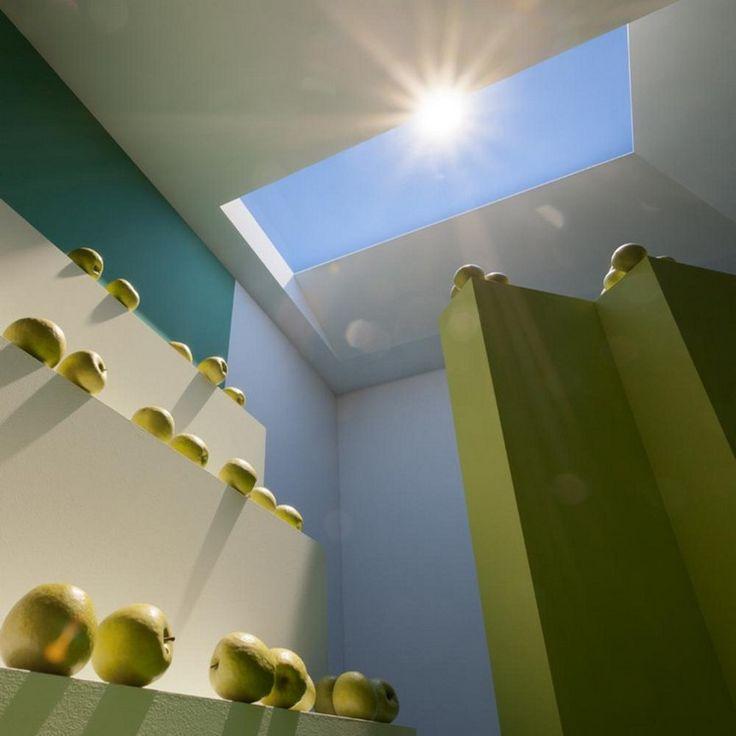 puits de lumière design et ambiance nature - un concept signé CoeLux