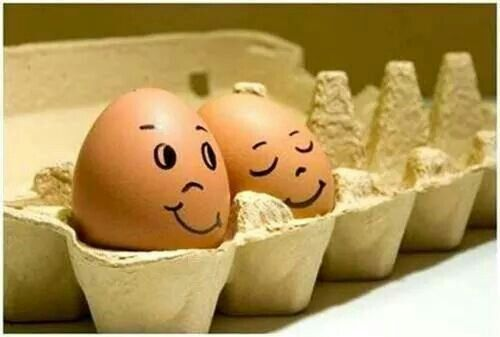 Iedere week verse  eieren.