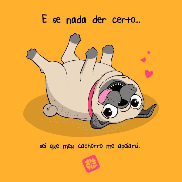 O Cão é o melhor amigo do Ser Humano.!...