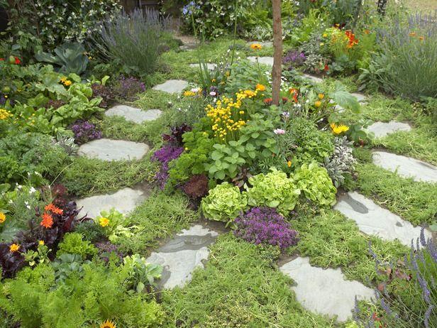 herb garden landscaping