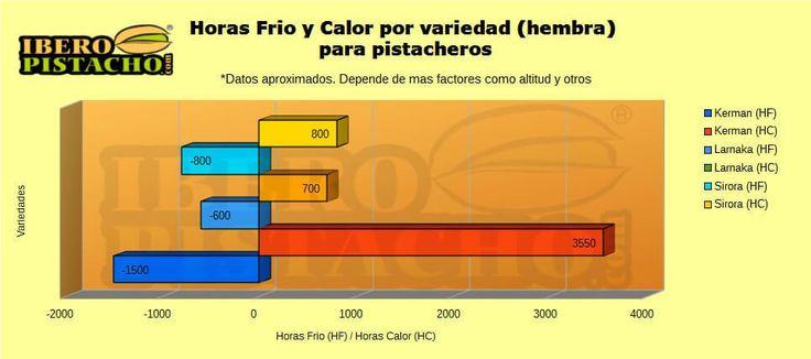 Grafico de horas frío y calor por variedad en pistacheros  #formación #pistacho #documentacion #iberopistacho