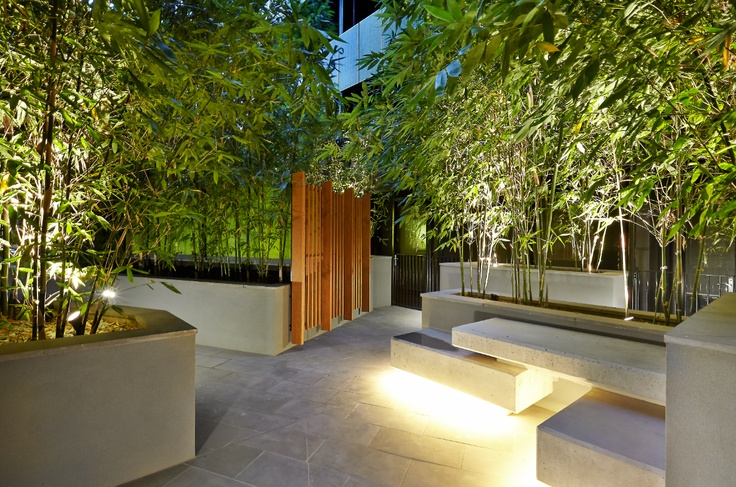 Bamboo Courtyard in the City Designed by Lisa Ellis Gardens in conjunction with Mider Pty Ltd (client) and Hayball Architects. Design, project management, soft landscaping by Lisa Ellis Gardens Melbourne
