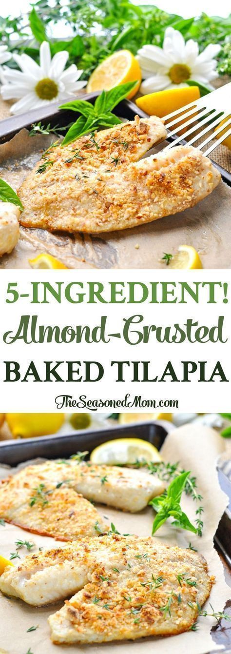 5-Ingredient Almond-Crusted Baked Tilapia is a healthy, easy, low carb dinner recipe with just 5 minutes of prep! Fish Recipes | Low Carb | Easy Dinner Recipes | Healthy Dinner Ideas #healthyrecipes #healthyfishrecipestilapia