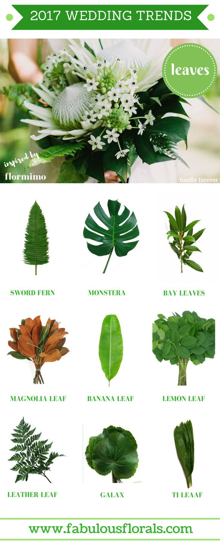 2017 wedding trends! LEAVES chart.  Your #1 source for wholesale DIY wedding flowers! #pantone2017 #diyflowers #weddingflowers #weddinggreenery #weddingtrends #greenery #leaves #bouquet
