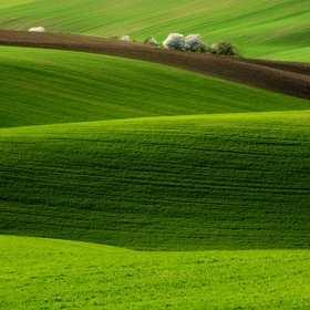 Beautiful lands, I love the colors of this shaded land, in greens, emeralds and peridot colors.