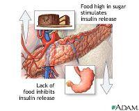 alimentos ricos en hierro y acido folico pdf valor normal de acido urico en hombres hacer deporte y acido urico bajo