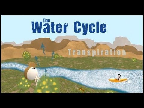 We Produced This Video About The Water Cycle For Our Middle Grades Series With