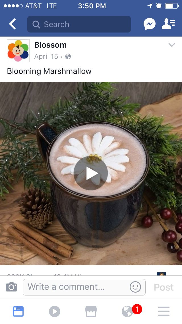 How to make a blooming marshmallow flower