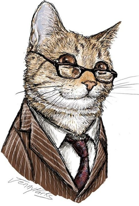 Doctor Who Cat - The Tenth Doctor -- all 11 doctors as cats