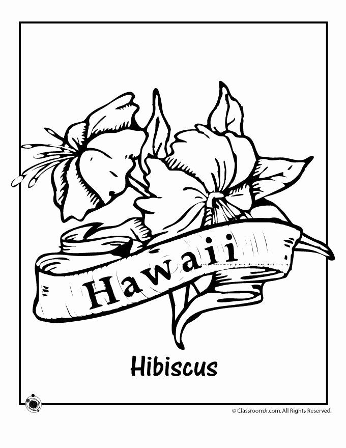 Hawaiian Flower Coloring Page Inspirational 17 Best Images About