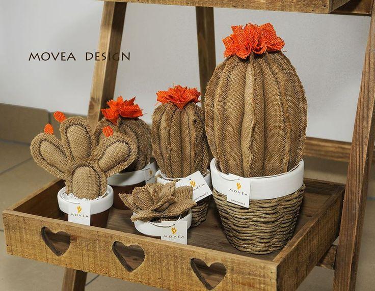 Cactus arredamento ~ Best movea design images feltro cactus plants