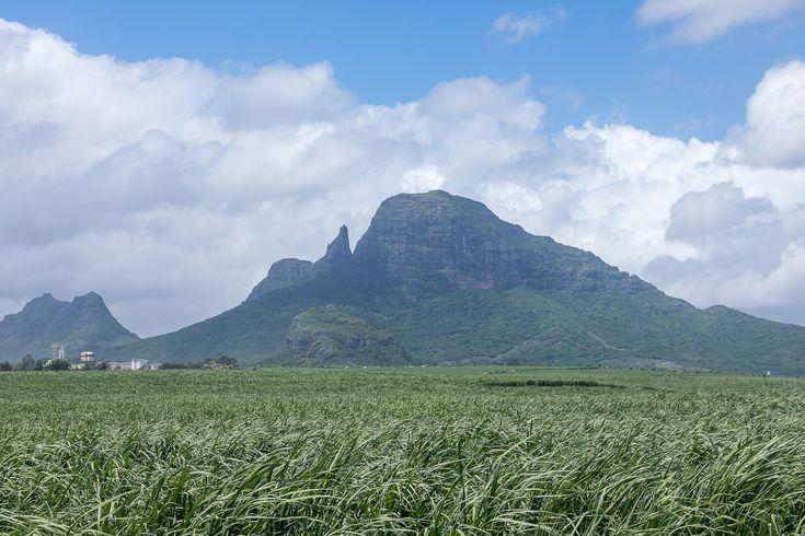 Mauritius Tipps: die besten Hotels, die schönsten Strände, die beste Reisezeit