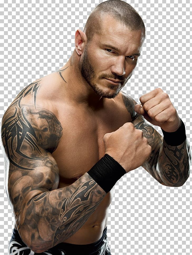 Randy Orton Wwe Championship Money In The Bank Ladder Match Wwe Money In The Bank World Heavyweight Ch Wwe Money Randy Orton Wwe World Heavyweight Championship