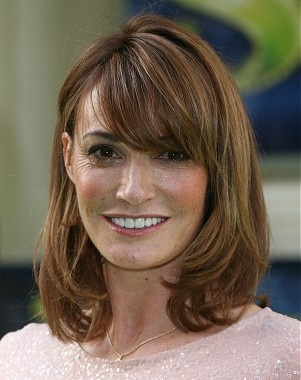 A long brown straight Sarah Parish hairstyle by Celebrity Hairstyles