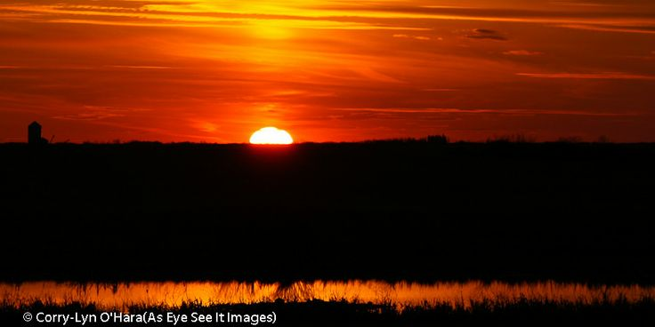 Photograph The farmer's sunrise by Corry-Lyn O'Hara on 500px