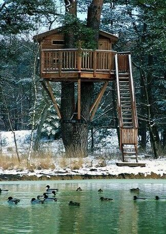Perfect winter escape in a warm and cozy treehouse.