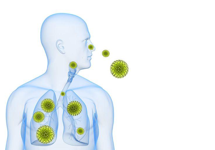 HealthFreedoms – 10 Foods That Fight Allergies