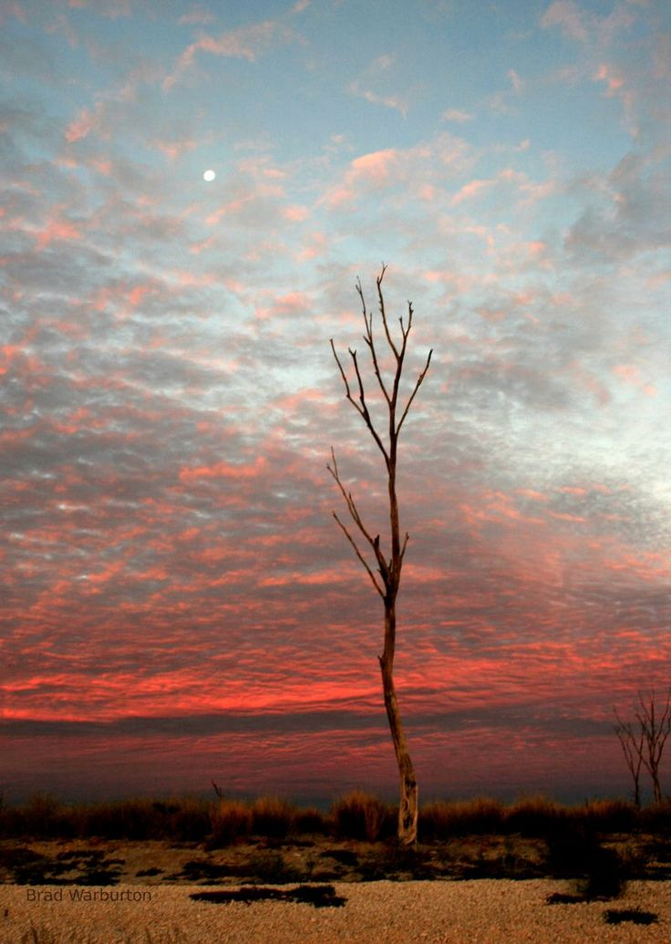 The skies of Balgo Hills, Australia. Photo by Brad Warburton.