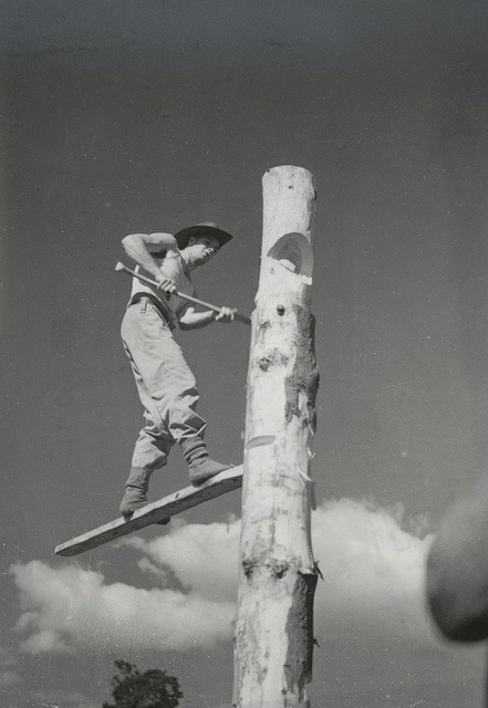 Axemen's Carnival    This gelatin silver photograph from the Argus Newspaper Collection of Photographs shows the winner of the tree felling championship, Sapper Harry Malkin of Victoria in action.  Australia (looks about 1940's-50's)