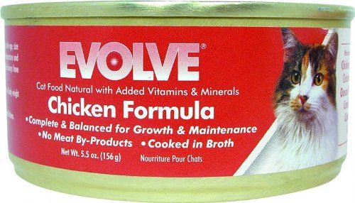 Evolve Can Cat Food Amazon