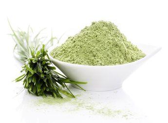 Barley Grass Powder benefits