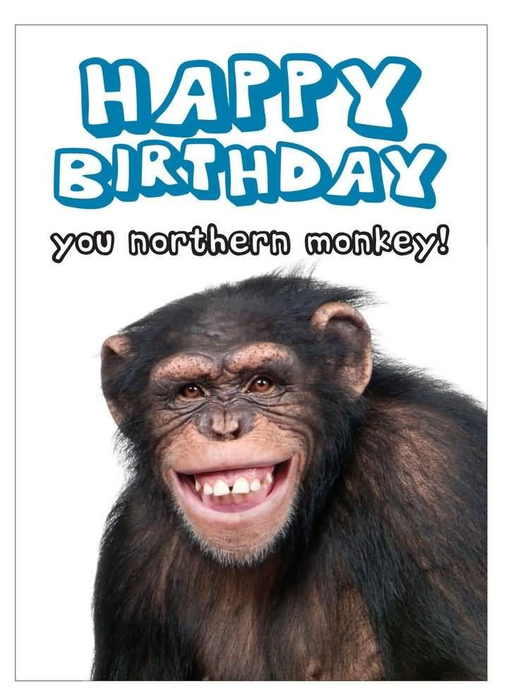 happy birthday funny monkey - photo #13