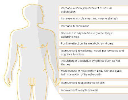 Low Testosterone Symptoms Wiki