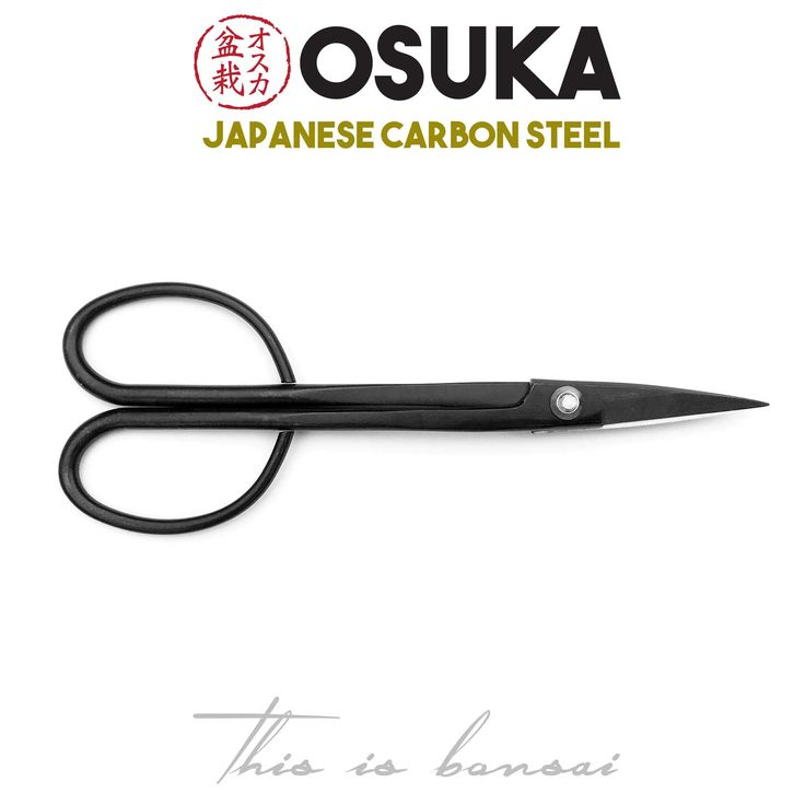 • OSUKA Bonsai Scissors (Large) • Length – 210mm  • Finish – Black • Material – High Quality Japanese Carbon Steel